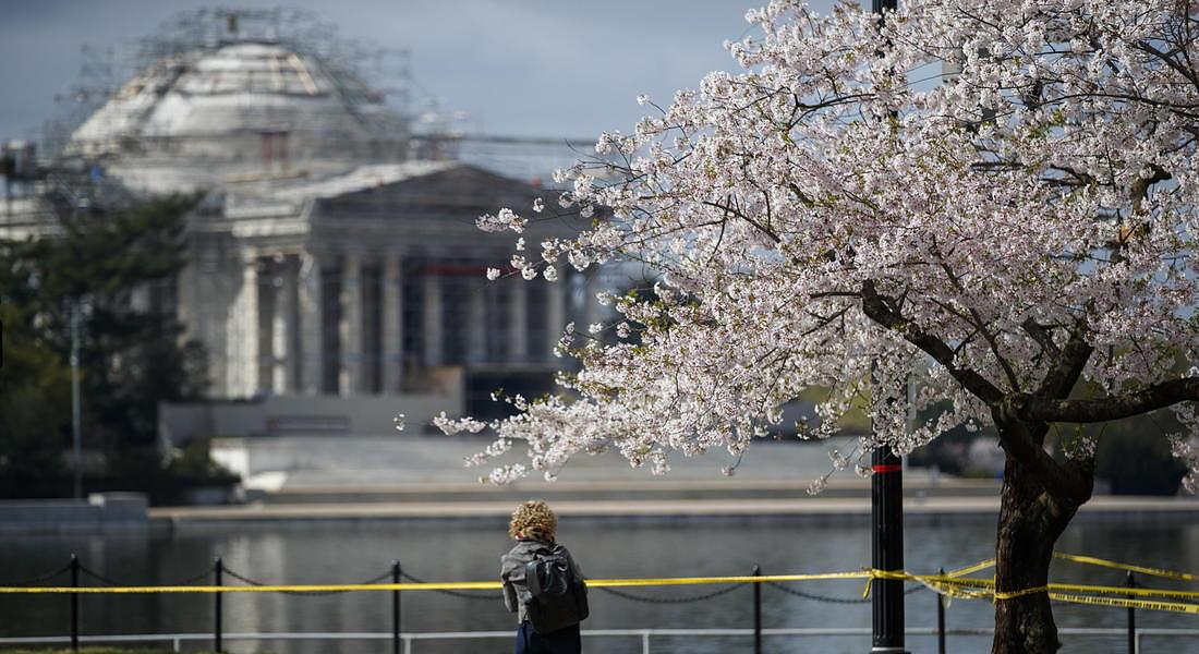 Road and path closures around Tidal Basin to discourage people from gathering © EPA