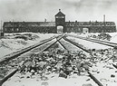 76th anniversary of the liberation of former German Nazi concentration and extermination camp Auschwitz-Birkenau (ANSA)