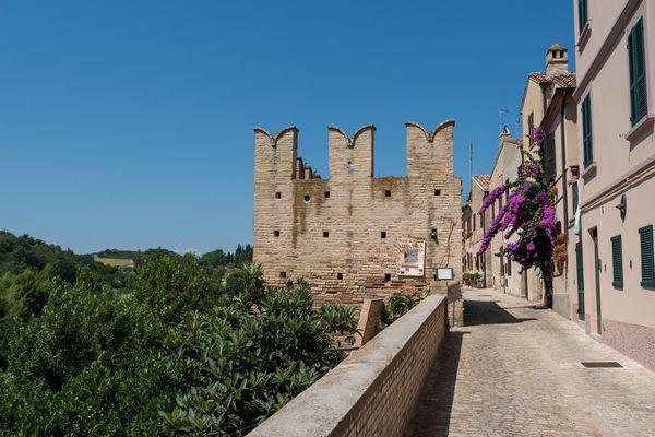 Prima guida turistica Torre di Palme - Marche - ANSA.it