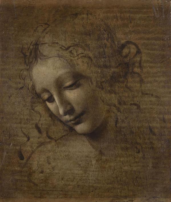 Leonardo e la Scapiliata, oltre bellezza