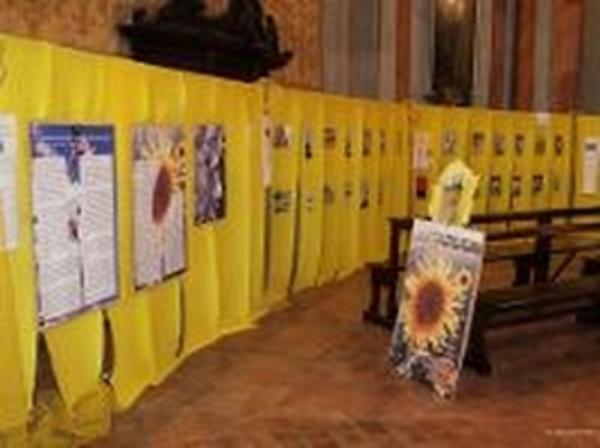 Mostra-appello sulle api a Orvieto
