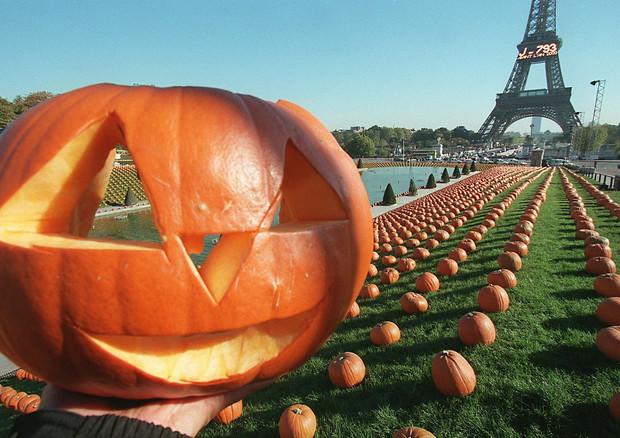 Zucca Di Halloween Piu Grande Del Mondo.Halloween Coldiretti Vola L Export Di Zucche 16 Business Ansa It