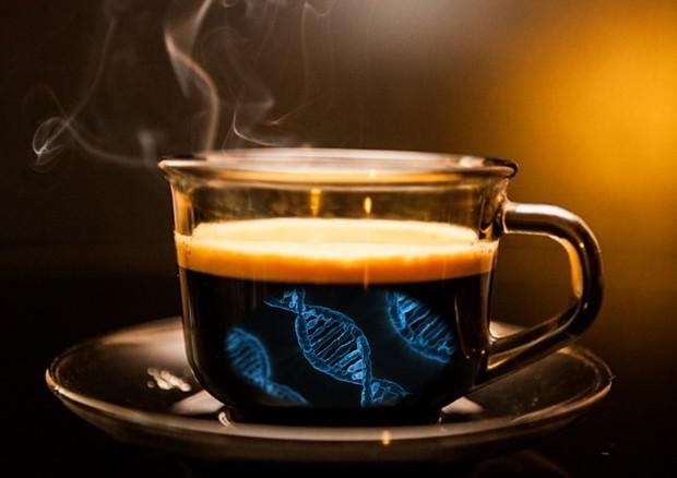 tumore alla prostata e caffe de
