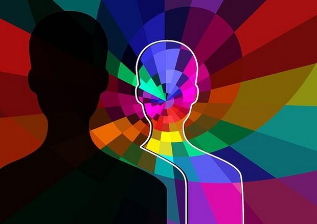 Il cervello femminile è più attivo di quello maschile, lo indica l'analisi di oltre 46.000 immagini relative alla funzionalità © Ansa