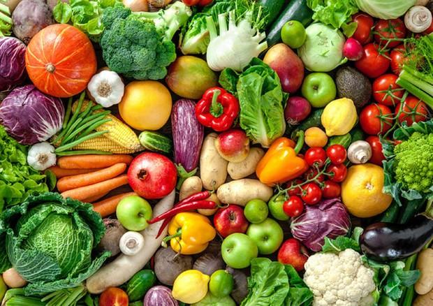 Crescono gli acquisti di ortaggi freschi pronti, +5,9% nel 2018 - Mondo  Agricolo - ANSA.it