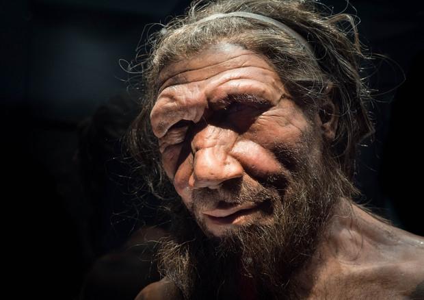 Grotte dei Neanderthal svelano le oscillazioni del Mediterraneo