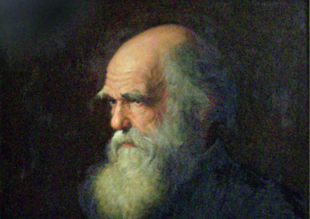 Ritratto di Charles Darwin dipinto da Walter William Ouless nel 1875 (fonte: Wikipedia) © Ansa