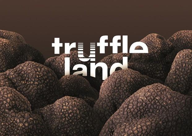 Prosegue progetto Truffleland Urbani Tartufi - Prodotti Tipici - ANSA.it