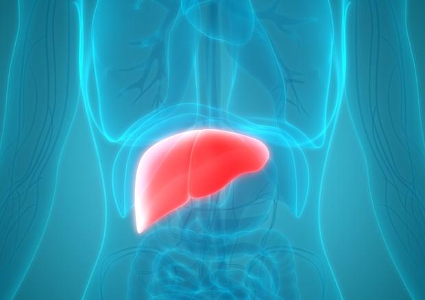dieta per le persone con fegato malato