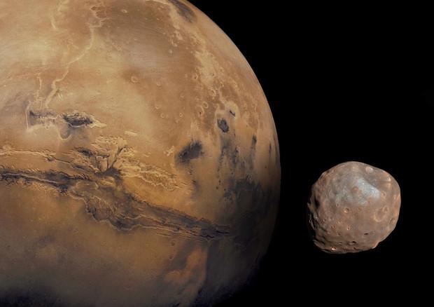 Marte con le sue lune Phobos e Deimos (fonte: NASA) © Ansa