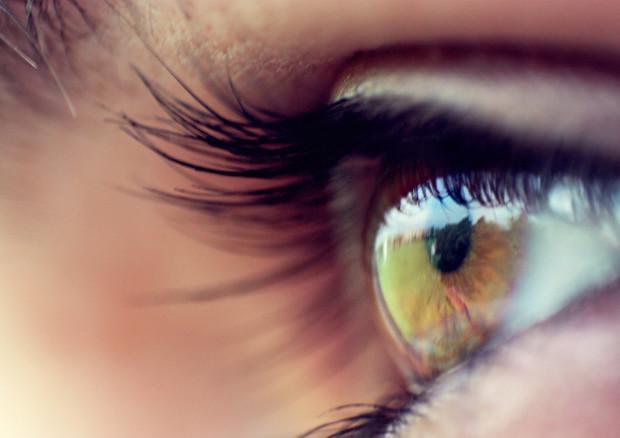 Un elettrodo stimola il nervo ottico generando stimoli simili a quelli visivi (fonte: Michele Catania, Flickr) © Ansa