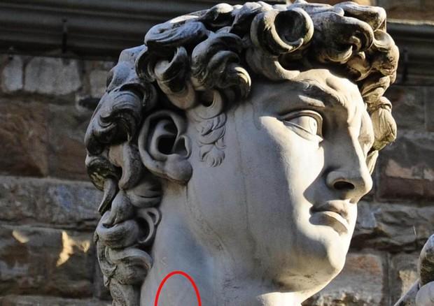 L'occhio 'clinico' di Michelangelo nel David anticipò la scienza © ANSA