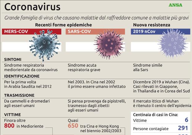 Coronavirus, le recenti forme epidemiche © ANSA