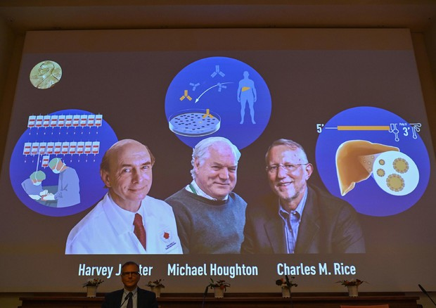 Nobel Medicina a Alter, Houghton e Rice © AFP