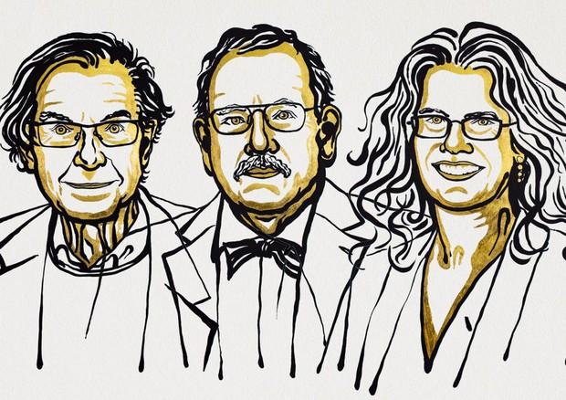 Roger Penrose, Reinhard Genzel e Andrea Ghez.. Foto Niklas Elmehed. © Nobel Media. © Ansa