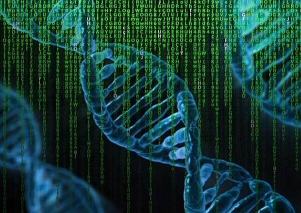 Svelando il 'codice a barre' che permette di silenziare i geni, regolando l'attività delle cellule. (fonte: Pixabay) © Ansa