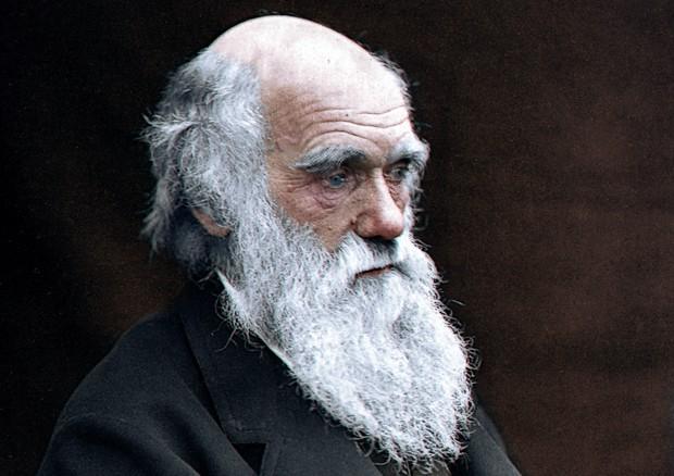 Darwin Day, il mondo celebra il papà dell'Evoluzione. 9851759cadc681c0d3b211e96207a13d
