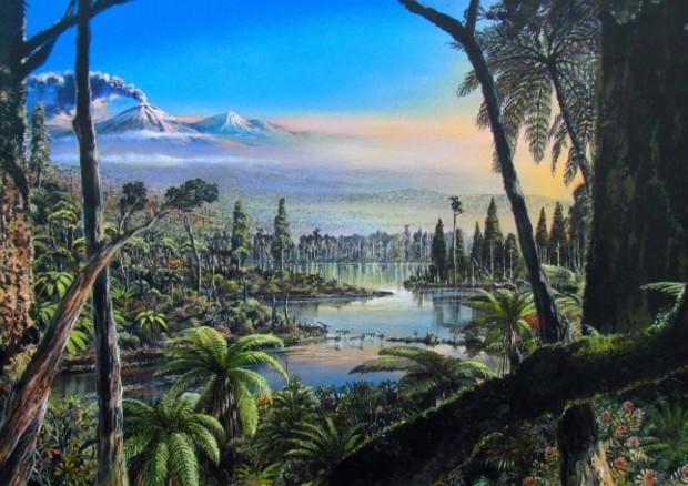 Un'antica foresta pluviale.