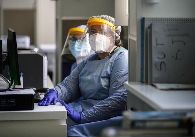 Coronavirus, medici specializzati © ANSA