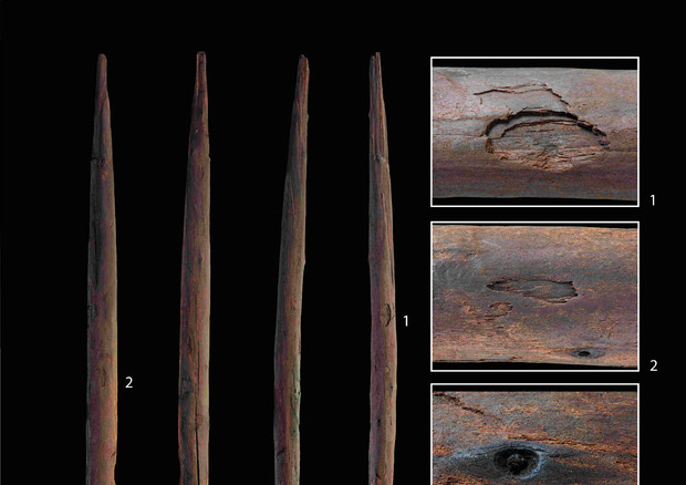 Il bastone da lancio ritrovato a Schoeningen (fonte: Unitersità di Tubinga) © Ansa