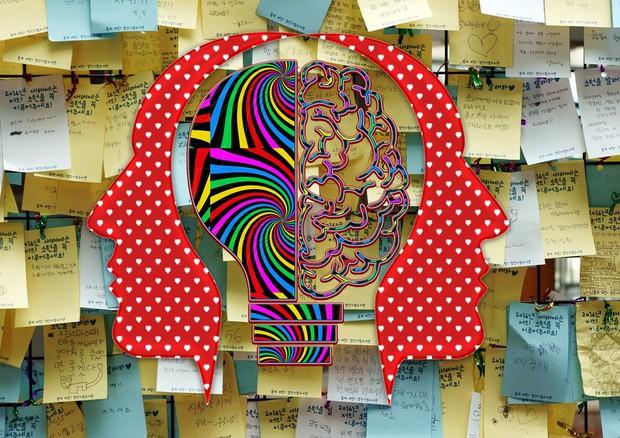 Identificate le aree del cervello che permettono di ricostruire i ricordi con precisione (fonti: Jeon Sang-O e chiplanay/Pixabay) © Ansa
