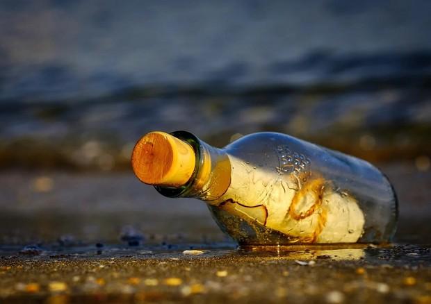 I neuroni colpiti da Alzheimer rilasciano dei 'messaggi in bottiglia' utili alla diagnosi (fonte: Pixabay) © Ansa