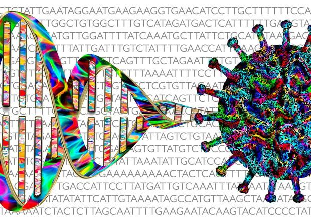 Covid, urgente accelerare la condivisione dei dati genetici  (fonte: Marek Studzinski/Pixabay) © Ansa