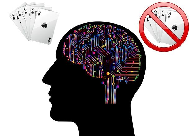 Individuati i neuron legati ai comportamenti rischiosi (fonte: Scuola Superiore Sant'Anna) © Ansa