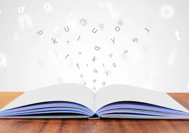Scoperto nel cervello il meccanismo che ci permette di leggere (fonte: Pixabay) © Ansa