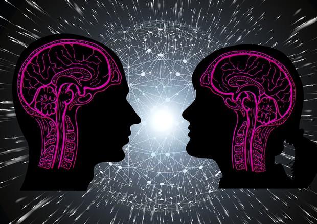 Nel cervello il meccanismo che rende la paura contagiosa (fonte: Gerd Altmann da Pixabay) © Ansa