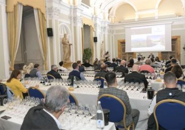 Wine: Istituto Grandi Marchi restarts from Rome – Festivals and occasions