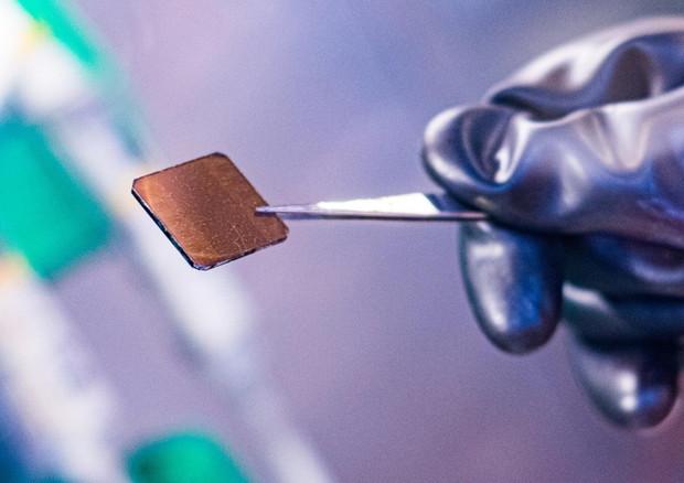 Le celle solari 'germogliate' in laboratorio