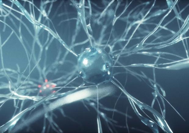 Rappresentazione artistica di un microchip in ascolto dei neuroni (fonte: Istituto Italiano di Tecnologia) © Ansa