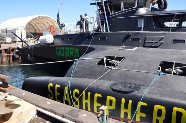 Sea Shepherd rinuncia a inseguimenti baleniere del Giappone