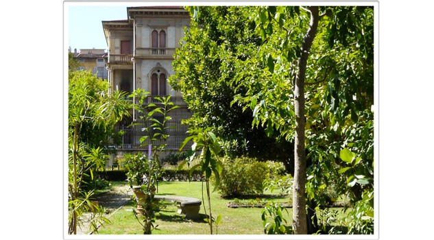 Tra i profumi dell 39 orto botanico per risvegliare l 39 olfatto for Giardino orto botanico firenze
