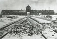 76th anniversary of the liberation of former German Nazi concentration and extermination camp Auschwitz-Birkenau © Ansa