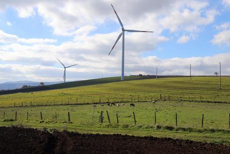 Risultati immagini per parco eolico sigilli