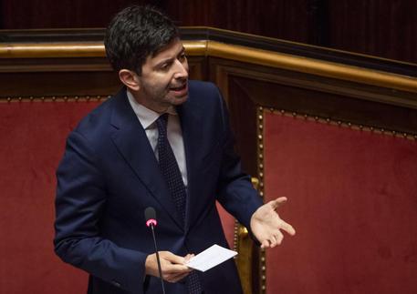 Il ministro della Salute, Roberto Speranza, in Senato in una foto di archivio © ANSA