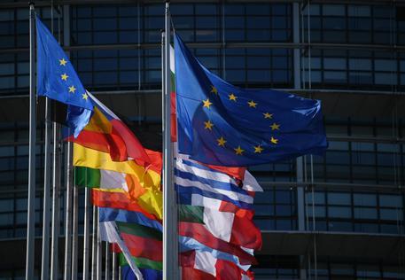 Bandiere al parlamento europeo © EPA