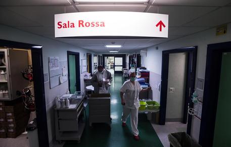 Coronavirus Speranza Ci Aspettano Mesi Difficili Stabili I Nuovi Casi 1 392 In Calo I Morti 14 Cronaca Ansa