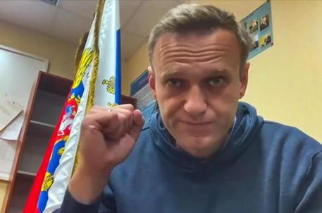 Navalny attacca Putin: 'Ecco il suo palazzo segreto' - Mondo - ANSA