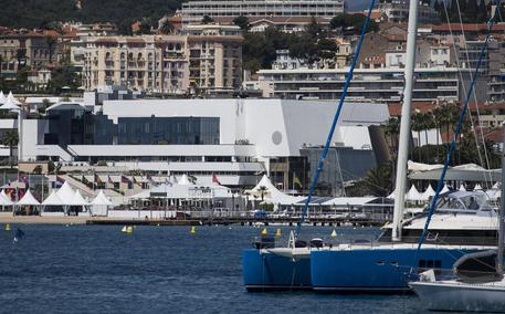 Cannes: star e autori, da Penn a Campion prime voci thumbnail