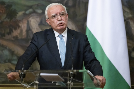 Palestina a Onu, 'quanti morti servono per la condanna?' thumbnail