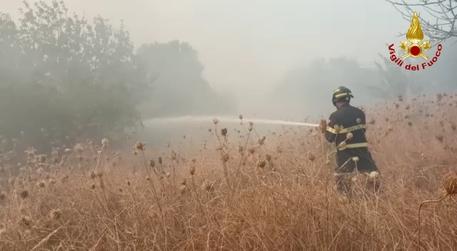 Rogo Oristanese: fiamme riprendono vigore,in azione Canadair - Cronaca