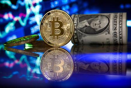 meilleur sito de il commercio bitcoin 0 01 btc a usd