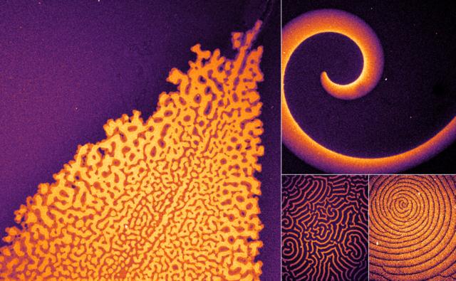 Sembrano opere d'arte le strutture delle proteine che hanno permesso di capire i meccanismi legati alle funzioni necessarie alla vita (fonte: Glock et al. CC BY 4.0)
