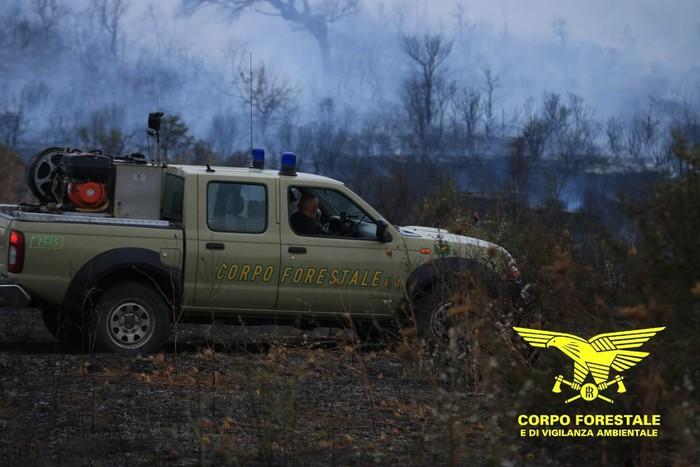 Rogo Budoni: fiamme spente, parte turisti rientra a casa thumbnail