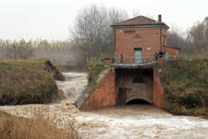 Bologna's secret canals to resurface