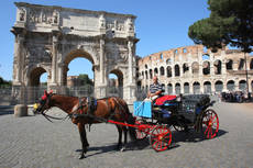 Rome 'horse ambulance' to help tourist steeds in need